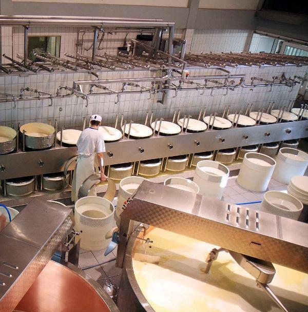 Industria lactea aceros